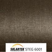 STEG 6001_1