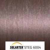 STEG 6004_1