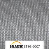 STEG 6007_1