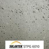 STPG 6010_1