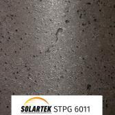 STPG 6011_1