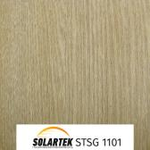 STSG 1101_2