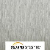 STSG 1107_2