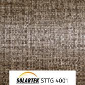 STTG 4001_2
