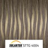 STTG 4004_1