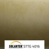 STTG 4016_2