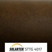 STTG 4017_1